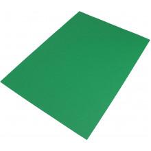 Бумага для пастели Tiziano А3 29,7х42см 160г/м2 №12 prato/зеленая (10) №72942112