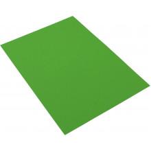 Бумага цветная А4 160 г / инт. Spectra Color Parrot 230 (зеленая) (100)