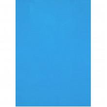 Обкладинки для брошурування А4 Axent пластикові 180 мкм прозорі сині (50) 2720-02