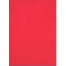Обкладинки для брошурування А4 Axent пластикові 180 мкм прозорі червоні (50) 2720-06