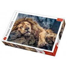 Пазлы Trefl 1000 элементов Спящий лев