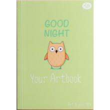 Блокнот A6 48 листов без линовки Profiplan Artbook owl №902422