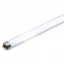 Лампа люминесцентная Philips Master TL-D 18Вт/830 G13 60 см (25)