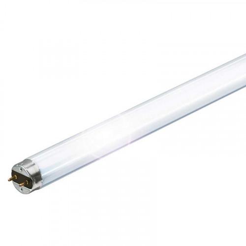 Лампа люмінісцентна Philips Master TL-D 18Вт/830 G13 3000К 60 см (25)