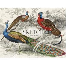 Альбом для эскизов склейка 40 листов A4+ Muse Sketch Школярик (1) (88) №PB-GB-040-047